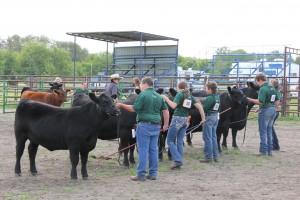 IMG_5573 - Canadian Angus Association