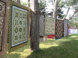 Okotoks Cars and Quilts 2014 (31)
