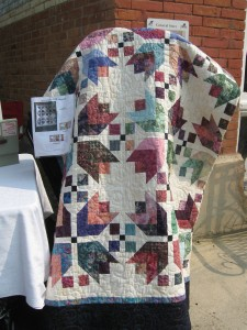 Okotoks Cars and Quilts 2014 (38)