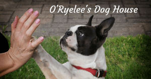 O'Ryelee's Dog House